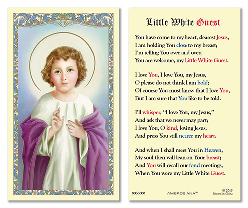 Little White Guest value laminated holy card