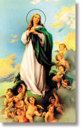 Assumption of Mary Wallet Sized Holy Card