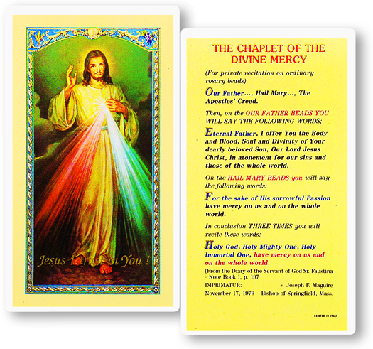 Divine Mercy Jesus laminated holy card