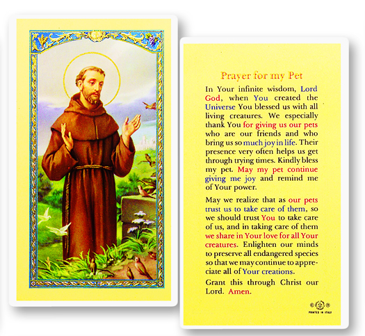 Jesus with Prayer for my Pet laminated holy card