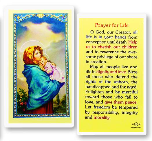 Madonna of the Streets with Prayer for Life Laminated Holy card