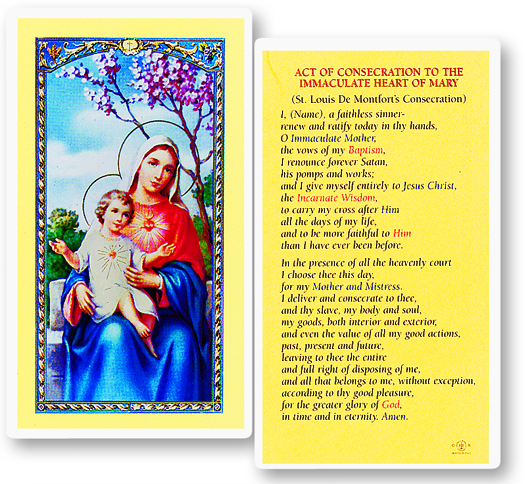 Immaculate Heart of Mary w/ Novena to the Immaculate Heart laminated holy card