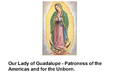 Guadalupe Laminated Holy Card